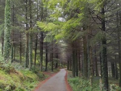 Parque Natural de Urkiola;que visitar en la sierra de madrid parque natural grazalema sierra de mont